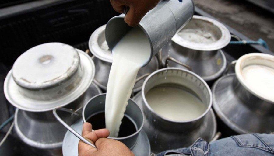 Efectos de la oxitocina sobre reproducción y producción de leche en vacas de doble propósito en el trópico